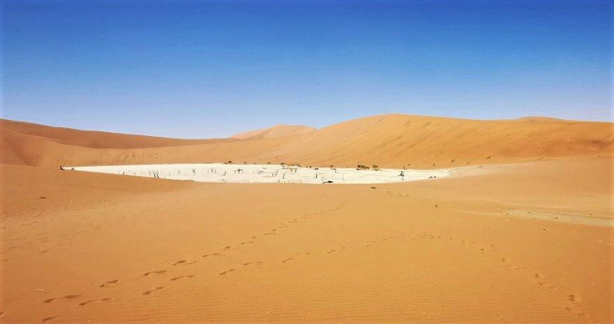 Namibia Namib Naukluft Nationalpark Sossusvlei Deadvlei
