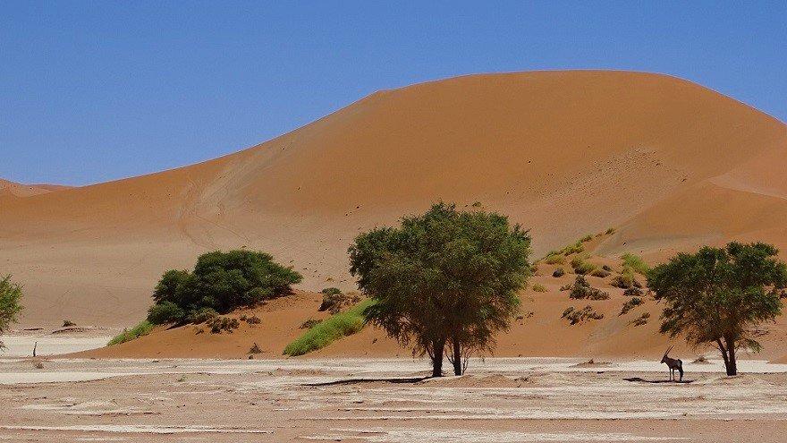 Namib Wüste Sossusvlei Düne Big Mama