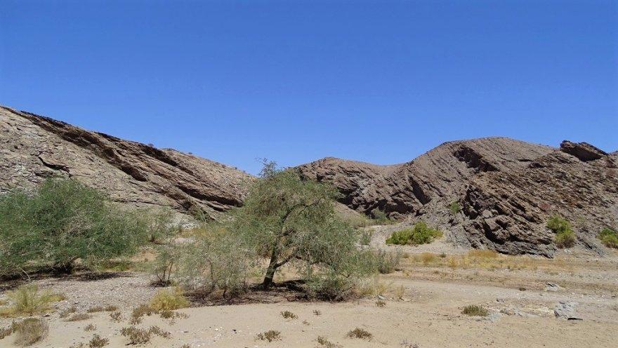 Namibia Namib Naukluft Nationalpark Rivier Kuiseb Trockenfluss