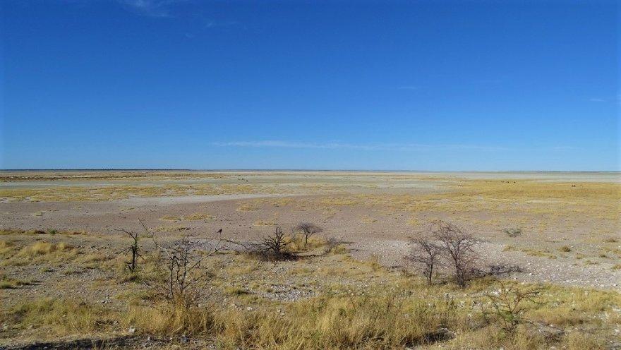 Namibia Etosha Nationalpark Salz Pfanne Landschaft