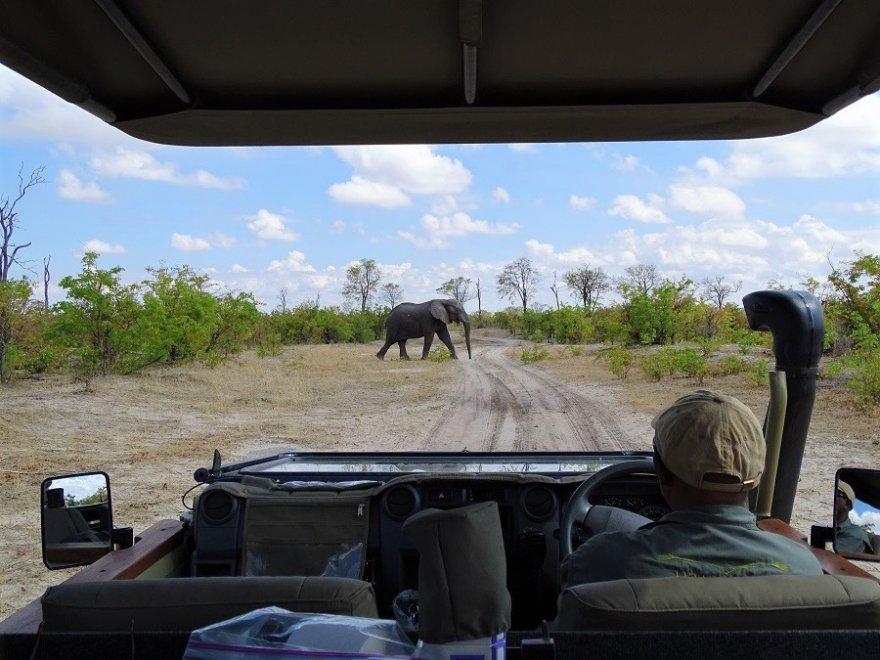 Botswana Chobe Nationalpark Savuti Pirschfahrt Elefanten Sichtung