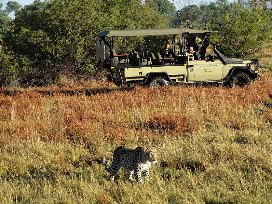 Botswana Tuli Block Mashatu Pirschfahrt Safari