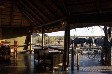 NEHIMBA LODGE, Hwange Nationalpark, Zimbabwe