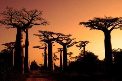 Rundreisen Madagaskar